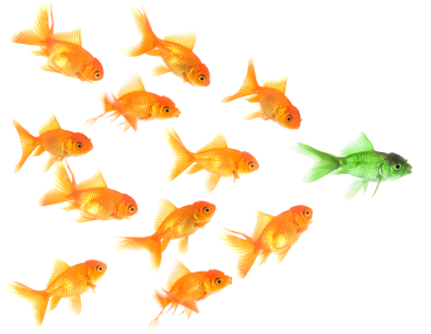 Attract more customers to your business with thought leadership